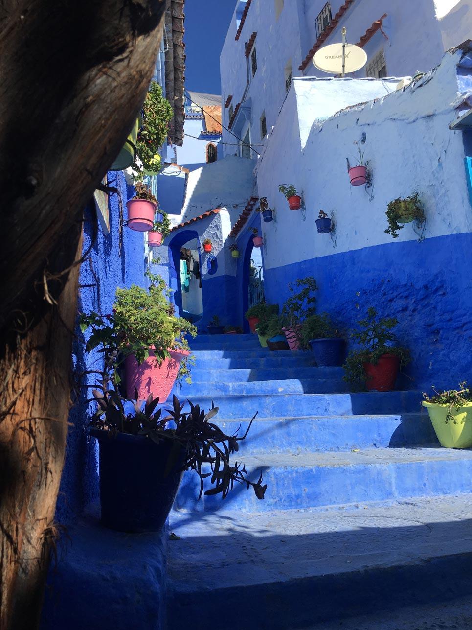 Erkenntnis des Tages: Es gibt einen Ort, welcher der Insel Santorin (Griechenland) ein klein wenig Konkurrenz macht und zwar Chefchaouen mit seinen blauen Häusern und Treppen.